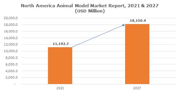 North America Animal Model Market