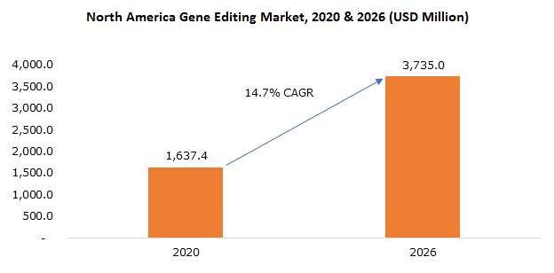 North America Gene Editing Market